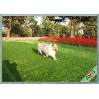 Wholesale Balcony Banquet Pet Artificial Turf Fire Resistant SBR-Latex / PU Backing from china suppliers