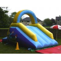 Wholesale BS34 Inflatable dry slide from china suppliers