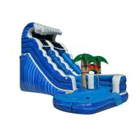 Wholesale Forest Adventure Inflatable Water Slide And Pool , Bouncy Double Water Slide from china suppliers