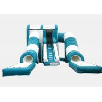 China Commercial Customized Cartoon Big Inflatable Water Slides For Adults 2 Tunnel Slip on sale