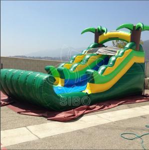China Aquapark Blow Up Water Slides /0.55 PVC Tarpaulin Garden Water Slides CE on sale