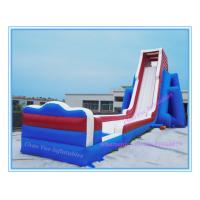 Wholesale 2015 Giant Inflatable Water Pool Slide for Amusement Park (CY-M2131) from china suppliers