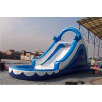 Quality Huge Dolphin Inflatable Water Slide Combo , Backyard Water Slides For Adults for sale