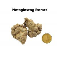 Wholesale 10% Sanchinosides NotoginsengExtract Powder , Natural Herbal Extracts Anti - Atherosclerosis from china suppliers
