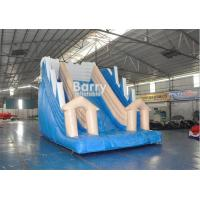Wholesale White And Blue Inflatable Water Slides / PVC Tarpaulin OEM Childrens Outdoor Slide from china suppliers