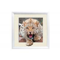 Buy cheap 5D House decorative Picture 3D Lenticular Printing Service CMYK Offset Printing from wholesalers