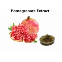 Wholesale Supplements Fruit Extract Powder Pure Natural 30% Punicalagin Pomegranate Extract from china suppliers