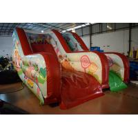 Quality PVC Tarpaulin Forest Commercial Inflatable Water Slides / Outdoor Mini Dry Slide for sale