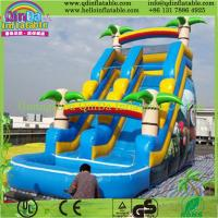 Custom Made Inflatable Slide for Sale