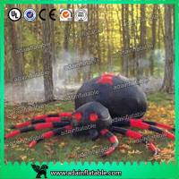 Wholesale Custom Oxford Halloween Event Decoration Inflatable Spider Cartoon from china suppliers
