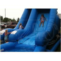 Quality Dolphin 16 Foot Water Park Inflatable Pool Slide / Air Water Slide Pool for sale