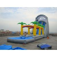 China Rental  Inflatable Water Slide for Sale on sale
