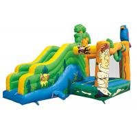 Wholesale Inflatable Kids Bounce House With Slide / Blow Up Bounce House Fire Retardant from china suppliers