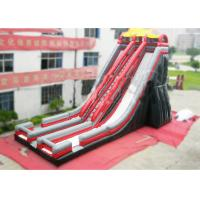 Wholesale Ice Age Inflatable Slide Rental Double Water Slide For Ice Age Film Fans from china suppliers