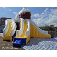 Giant Shark Commercial Inflatable Water Slides / Triple Lanes Adults Water Slide