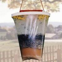 Wholesale Red Top Original Patent Fly Trap / Fly Away Fly Trap from china suppliers