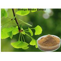 Wholesale Low Ginkgolic Acid Ginkgo Biloba Leaf Extract Powder Effective Dilate Blood Vessels from china suppliers