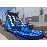 China Blue Dolphin Large Inflatable Water Slides , Faster Inflation Bouncy Castle Water Slide on sale