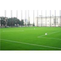 Wholesale Synthetic Lawns for Sports (RS130) from china suppliers