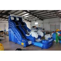 Wholesale Dolphin Inflatable Water Slide For kids from china suppliers