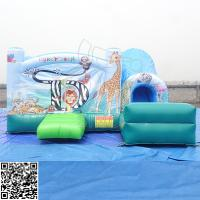 China Amusement Park Inflatable Water Slides / Bounce Slide PVC Tarpaulin Material on sale