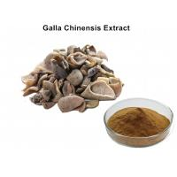 Wholesale 40% - 90% Ellagic Acid Powder, Health Food / Cosmetics Galla Chinensis Extract from china suppliers