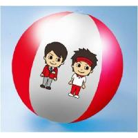 Wholesale Printed Beach Ball from china suppliers