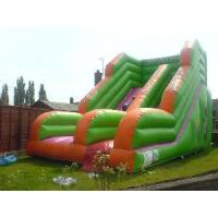 Wholesale Inflatable Double Slides (LJF9028M) from china suppliers