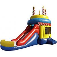 Wholesale Inflatable Bounce Slide (BS-04) from china suppliers
