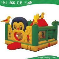 Wholesale Inflatable Jumper (TN-P129B) from china suppliers
