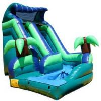 Buy cheap Inflatable Commercial Speed Slide, Water Park Raft Slide, Custom Amusement Water from wholesalers