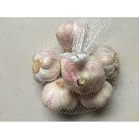 Wholesale Packaging Mesh Net Bags 80 Mesh 35m Length 5-8 Years Lifespan For Garlic / Ginger from china suppliers
