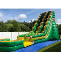 Wholesale Professional Giant Inflatable Slide For Inground Swimming Pools Oem Service from china suppliers