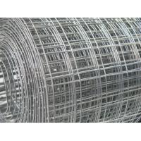 Wholesale SS 304 Weld Mesh Fence Panels Anti Rust For Agriculture / Construction from china suppliers