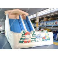 China Residential Inflatable Garden Water Slide durable For Children on sale