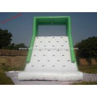Wholesale Large Green Inflatable Backyard Water Slide With Roof , 0.9mm PVC Tarpaulin from china suppliers