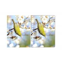 Buy cheap A5 3D Lenticular Spiral PET Notebook Covers With Lovely Birds Images from wholesalers