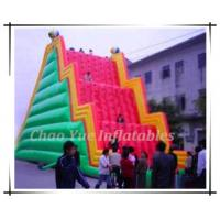 Wholesale Funny Inflatable Mountain Climbing (CY-M2055) from china suppliers