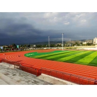 Quality EPDM Rubber Athletic Track Flooring Materials  Spike Resistant for sale