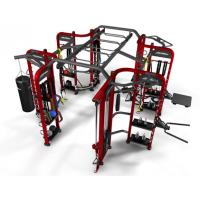 Wholesale Professional Synergy Gym Equipment , Multi Functional Synergy 360 Fitness Machine from china suppliers