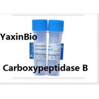 Wholesale Animal Components Free Sequence Grade Carboxypeptidase B for  Protein Sequence Analysis from china suppliers