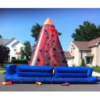 Wholesale Hot Sale Giant Inflatable Jungle Climbing for Sport Game (CY-M2105) from china suppliers