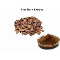 Wholesale 95% Proanthocyanidins Anthocyanin Extract Powder Pine Bark Extract Preventing Angiocardiopathy from china suppliers