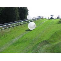 Wholesale 2012 newest purple inflatable zorb ball from china suppliers