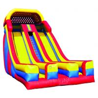 Wholesale tiger giant inflatable slide BC-124 from china suppliers
