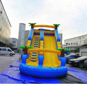 PVC Tarpaulin Inflatable Amusement Park Double Lane Blow Up Slide For Sports Game
