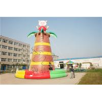 China portable inflatable climbing wall / inflatable rock climbing wall equipment for sports on sale