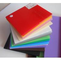 Impact Resistance Correx Plastic Sheets Danpla sheet For Construction Protection