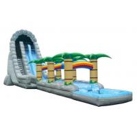 Wholesale Roaring River Water Slide with or without pool (64'L x 20'W x 27'H no pool) from china suppliers