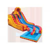 Wholesale Customized Giant Inflatable Water Slides , Blow Up Water Slide For Adults from china suppliers